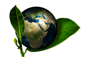 The Earth between two leaves